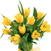 Order spring flowers, tulips for your lady all over Russia and Ukraine
